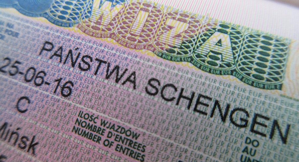 Виза в Польшу - инструкция как получить самому польский шенген