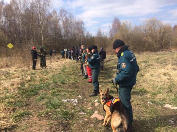 Как проходит поисково-спасательная операция в д. Любашки, где пропал ребёнок